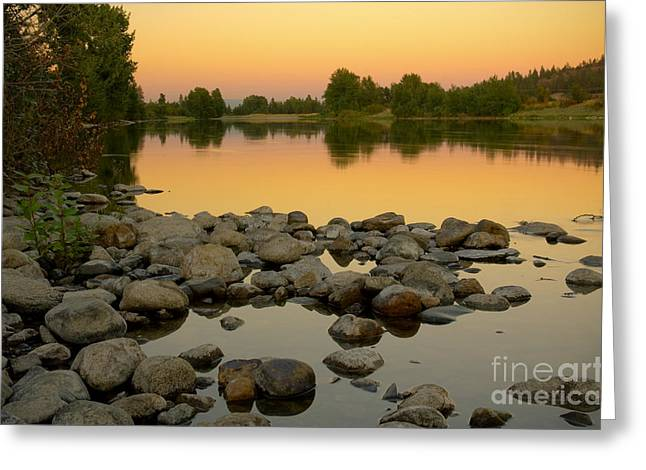 Golden Contemplation Greeting Card by Idaho Scenic Images Linda Lantzy