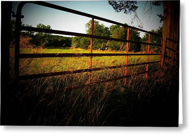 Golden Country Fence Greeting Card