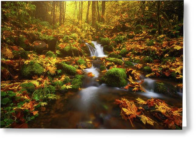Golden Creek Cascade Greeting Card