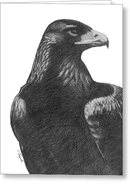 Golden Eagle Greeting Card by Lawrence Tripoli