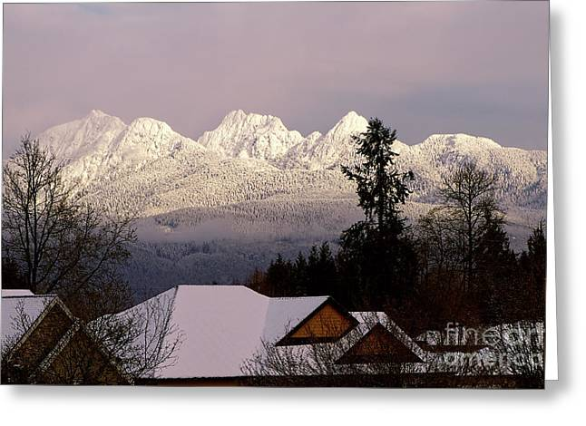 Greeting Card featuring the photograph Golden Ears Mountain View by Sharon Talson