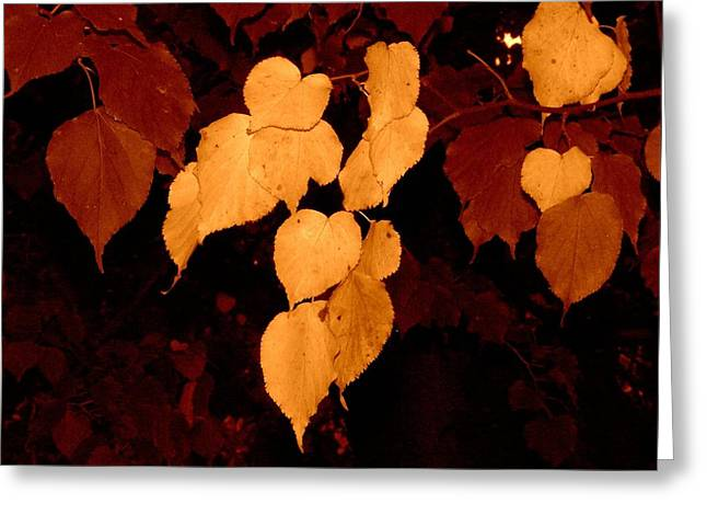 Golden Fall Leaves Greeting Card