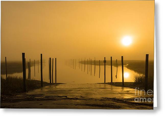 Golden Fog On The Nissequogue Greeting Card