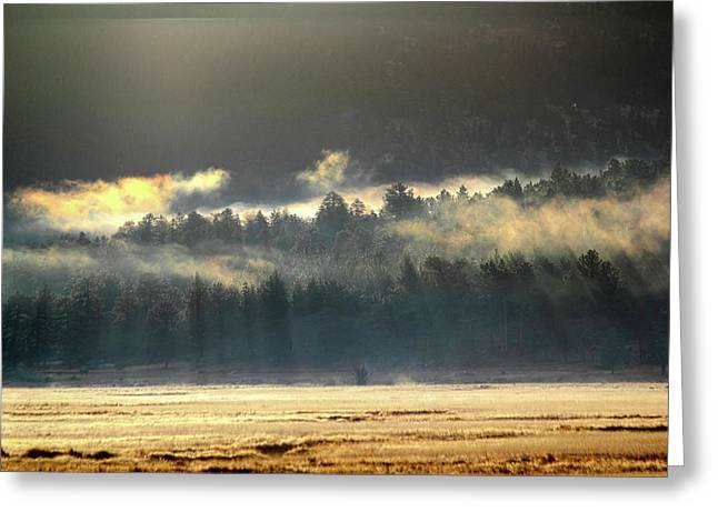 Greeting Card featuring the photograph Golden Fog by Shane Bechler