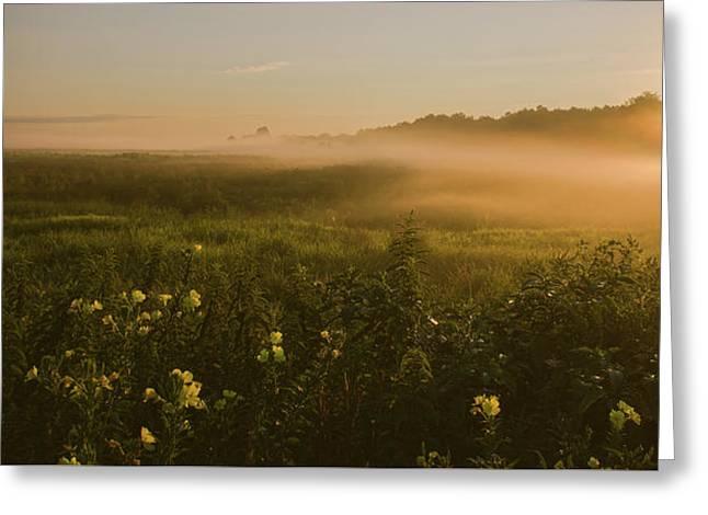 Golden Fog Sunrise At The Refuge Greeting Card