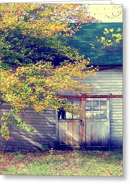 Golden Fall Foliage  Greeting Card by JAMART Photography