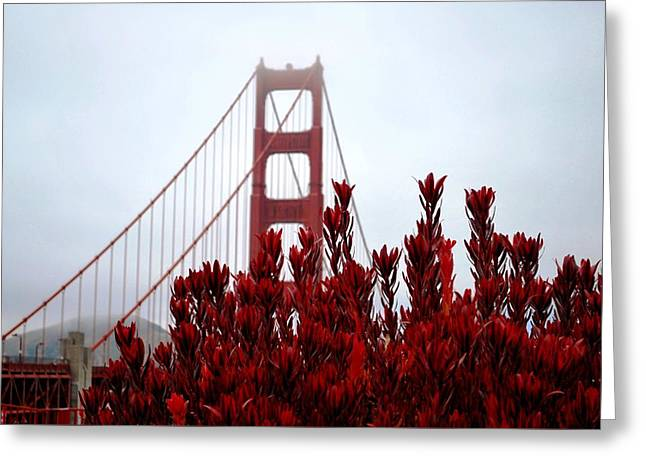 Golden Gate Bridge Red Flowers Greeting Card by Matt Harang