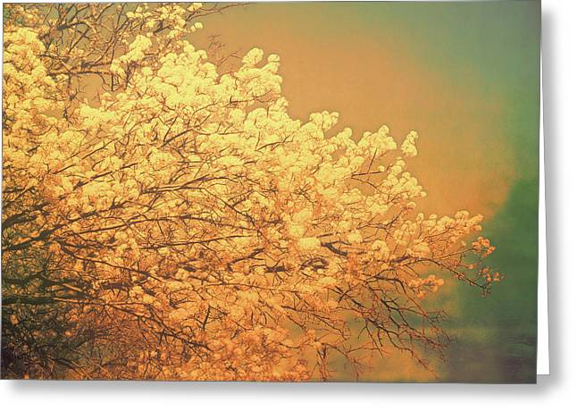 Golden Glow Greeting Card by Ann Powell