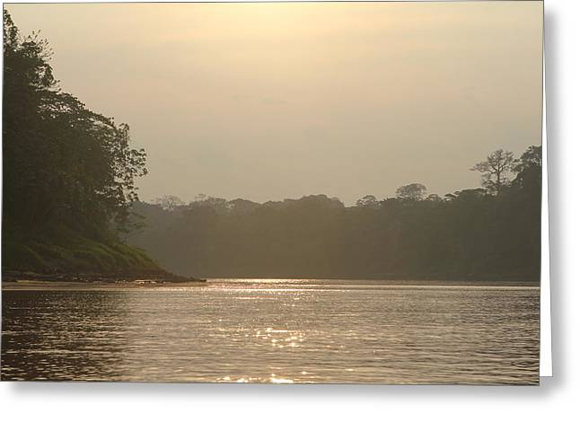 Golden Haze Covering The Amazon River Greeting Card
