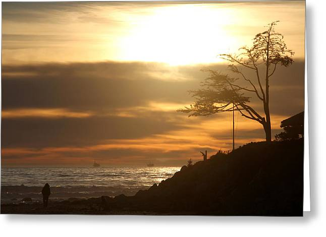 Golden Hour At Rincon Greeting Card by Michael Cobb