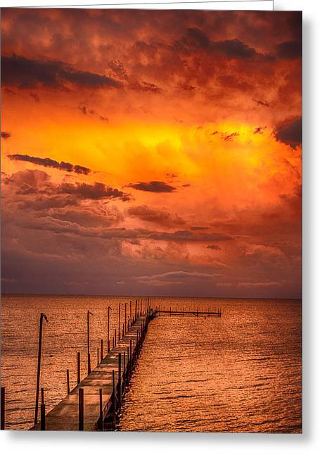 Golden Hour On Lake Milacs Greeting Card by Paul Freidlund