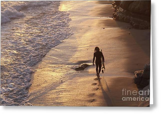 Golden Hour Swamis Beach Encinitas California Greeting Card