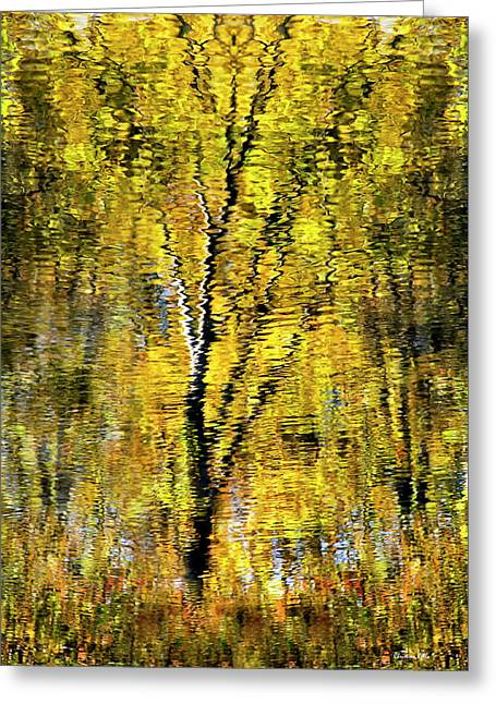 Golden Impressionist Tree Reflection Greeting Card by Christina Rollo