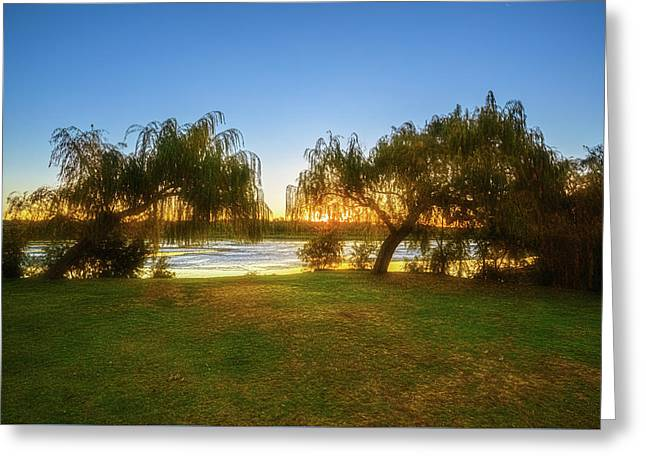 Greeting Card featuring the photograph Golden Lake, Yanchep National Park by Dave Catley