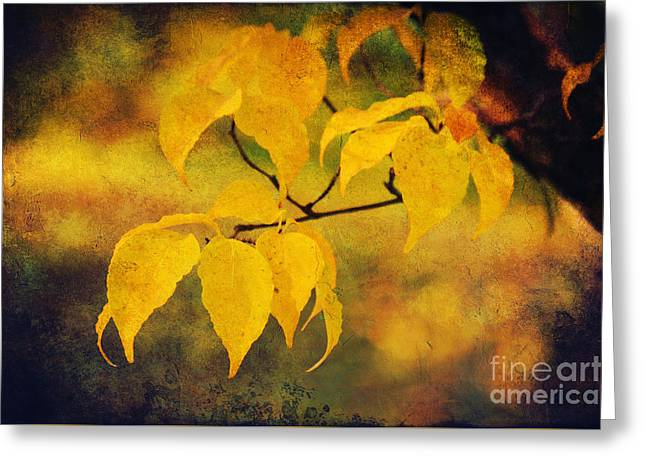 Golden Leaf Greeting Card by Angela Doelling AD DESIGN Photo and PhotoArt