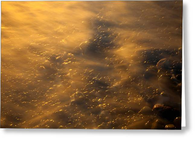 Golden Light Greeting Card by Mike  Dawson