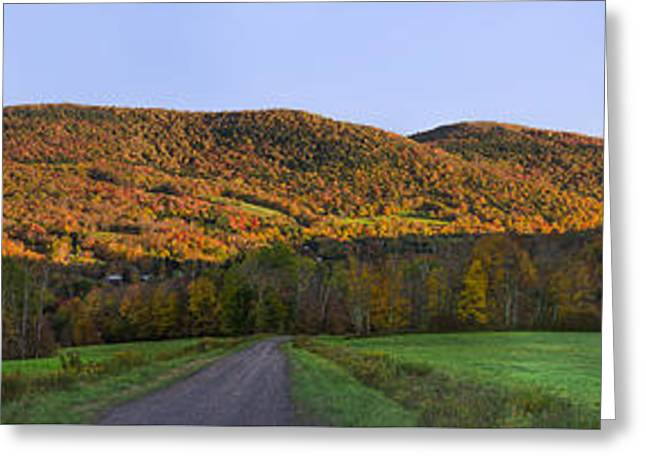 Greeting Card featuring the photograph Golden Light On The Catskills by Mark Papke