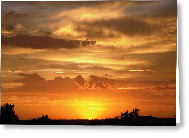 Golden Light Greeting Card by Stephanie Moore