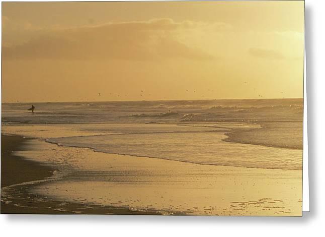 Golden Light Surfer Greeting Card