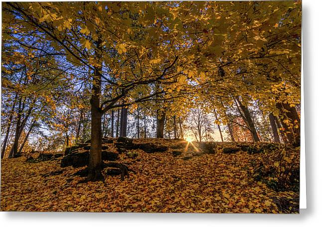 Golden Manito Greeting Card by Mark Kiver