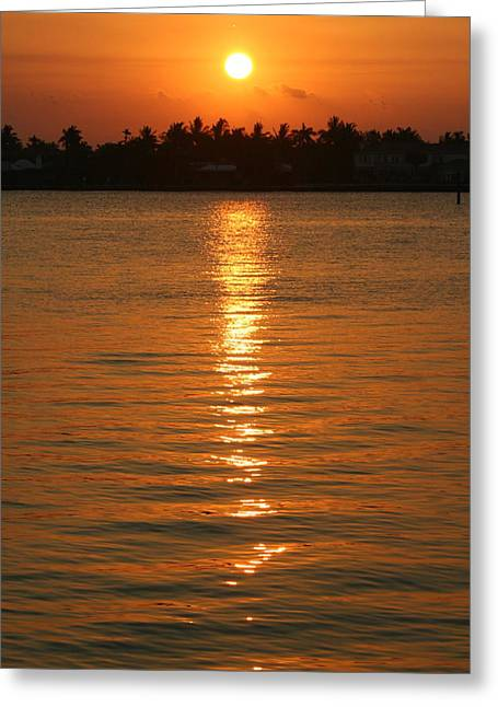 Greeting Card featuring the photograph Golden Moment by Diane Merkle
