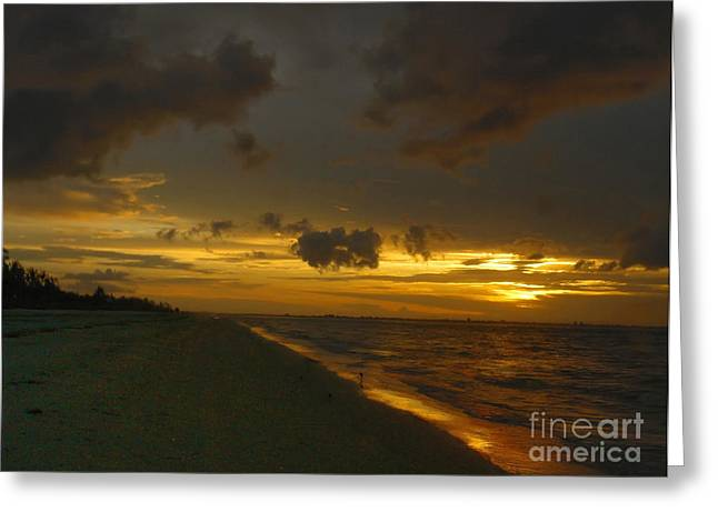Golden Morning Greeting Card by Jeff Breiman