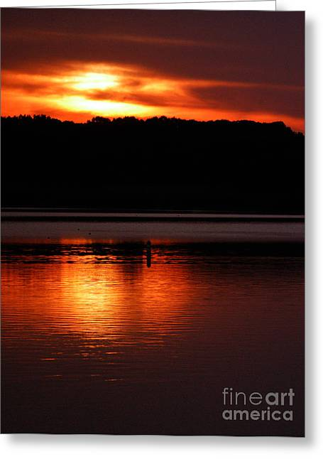 Golden Night Greeting Card by Clayton Bruster