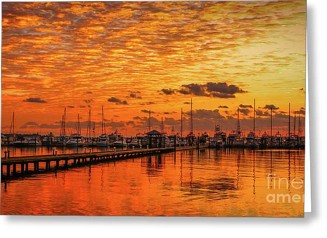 Golden Orange Sunrise Greeting Card by Tom Claud