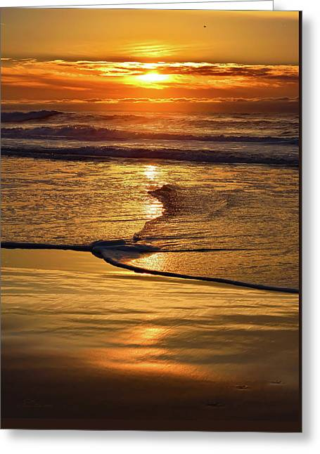 Golden Pacific Sunset Greeting Card
