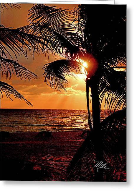 Golden Palm Sunrise Greeting Card