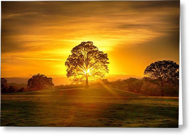 Golden Pastures Greeting Card