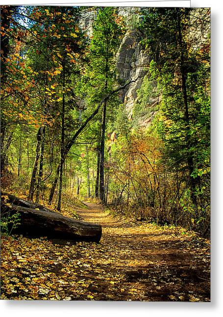 Golden Path Of Shadows Greeting Card