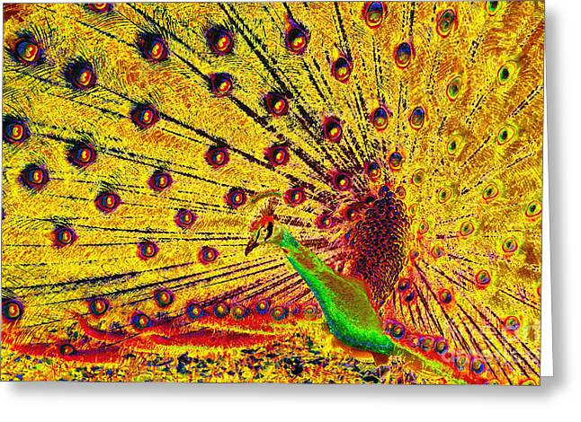 Golden Peacock Greeting Card by David Lee Thompson