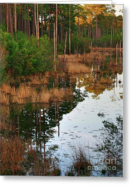 Greeting Card featuring the photograph Golden Pond by Lori Mellen-Pagliaro