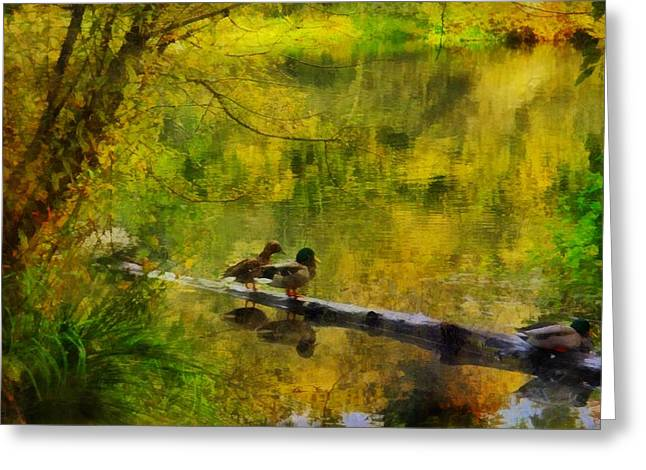 Golden Pond Greeting Card by Patricia Strand