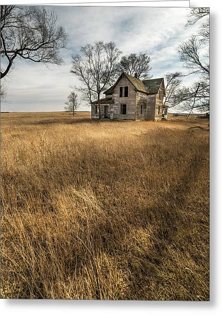 Golden Prairie  Greeting Card by Aaron J Groen