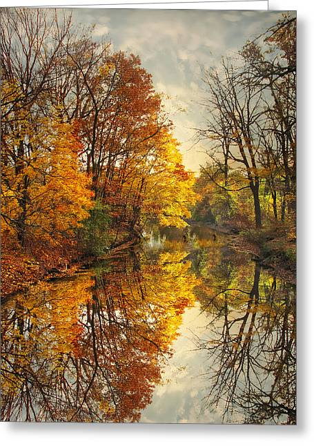 Golden Reflections Greeting Card by Jessica Jenney