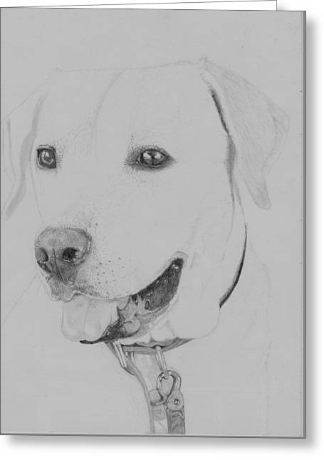 Golden Retriever Greeting Card by David Smith