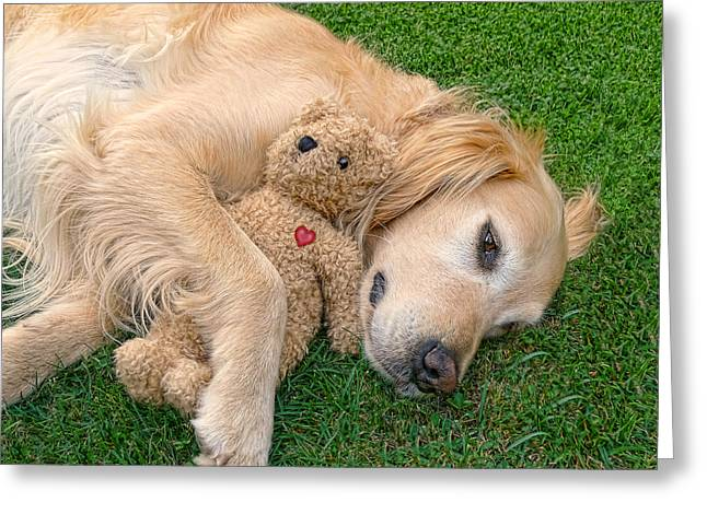 Golden Retriever Dog Teddy Bear Love Greeting Card by Jennie Marie Schell