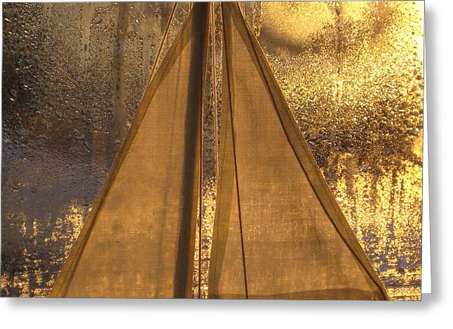Golden Sails Greeting Card by Lori  Secouler-Beaudry