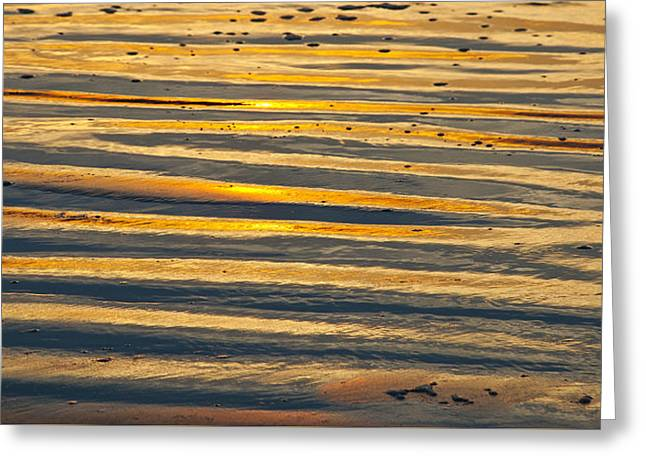 Golden Sand On Beach Greeting Card
