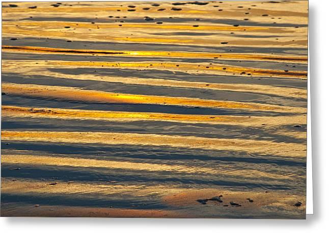 Golden Sand On Beach Greeting Card