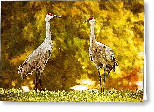 Golden Sandhill Cranes Greeting Card