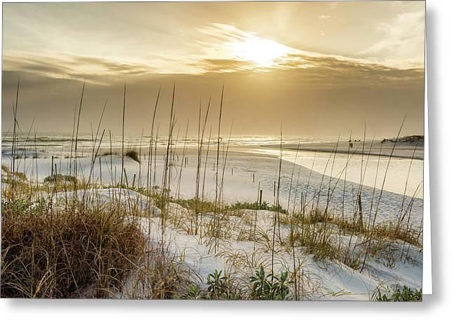 Golden Seagrove Beach Sunset Greeting Card