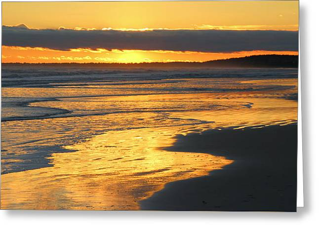Golden Shore Greeting Card