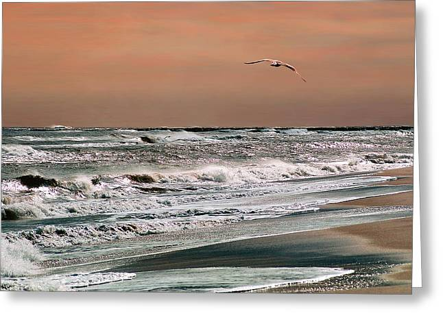 Greeting Card featuring the photograph Golden Shore by Steve Karol