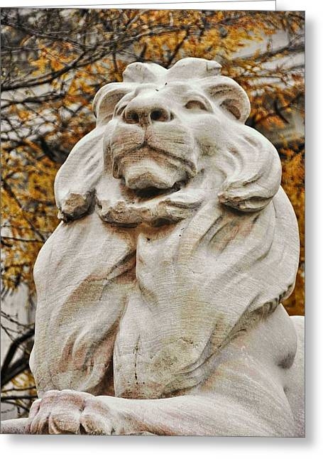 Golden Lion Strength Greeting Card by JAMART Photography