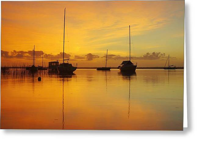 Golden Sunrise At Boreen Point Greeting Card