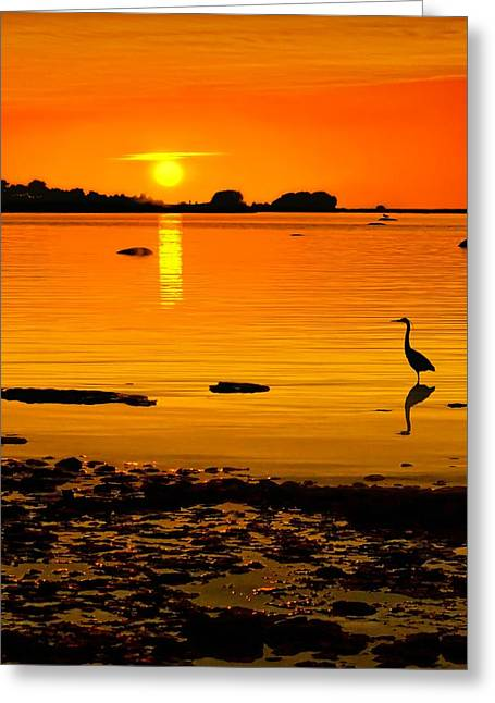 Golden Sunset At The Bay Greeting Card