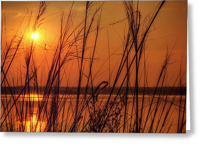 Golden Sunset At The Lake Greeting Card